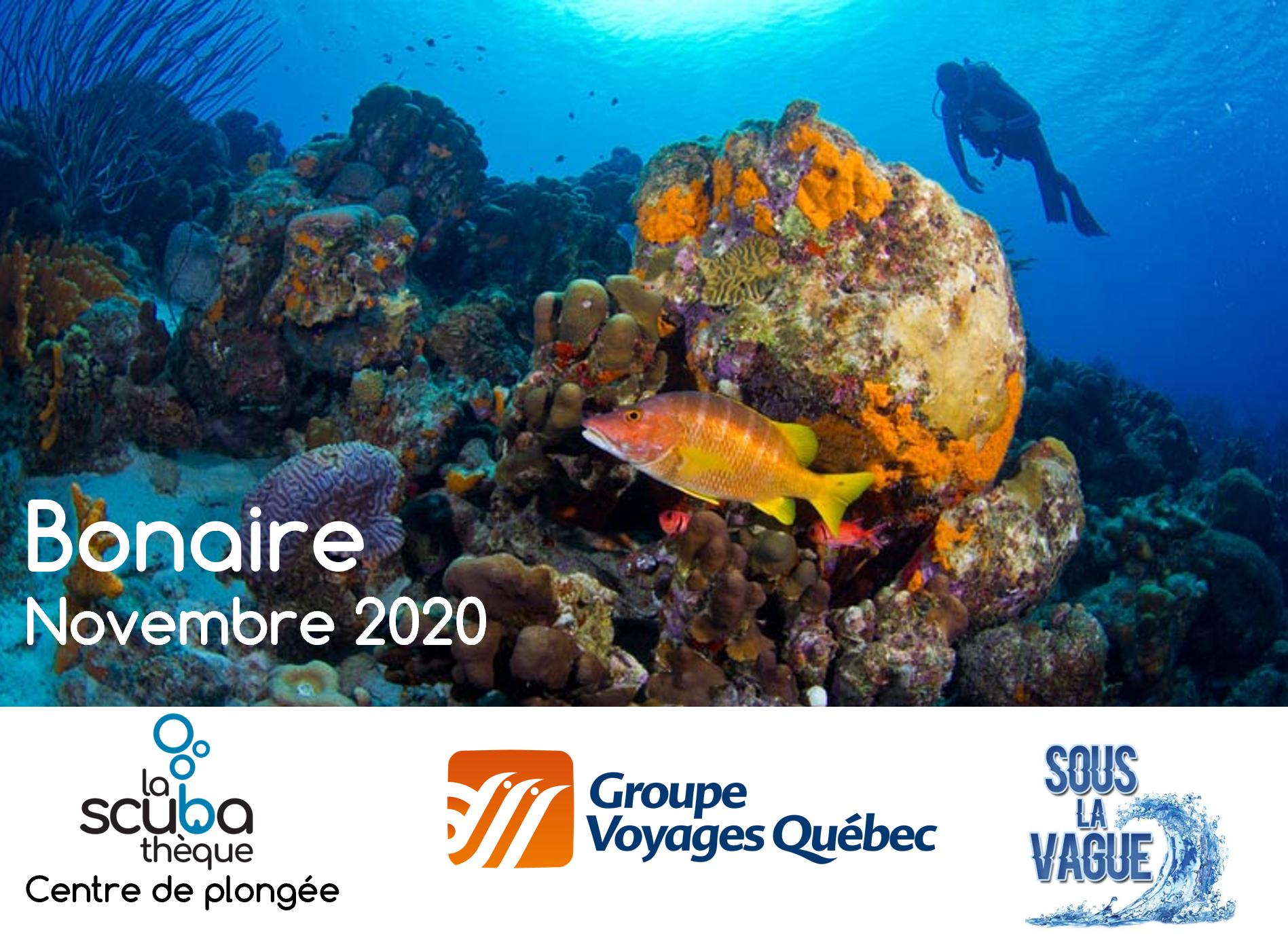 Voyage à Bonaire - Novembre 2020 - Demande de réservation