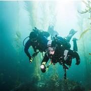 Divemaster PADI  Niveau Professionnel - Prochaine date 29 septembre 2021