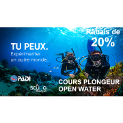 Plongeur Open Water PADI - Théorie & Piscine (sur semaine - 4 soirs)