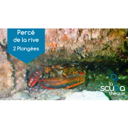 Percé (de la rive) - Prochaine date 15 juillet 2020