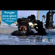 Plongée sous-glace au Port de Québec / 8-9-15 ou 16 février 2020