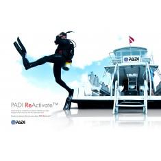 Remise à niveau - PADI ReActivate