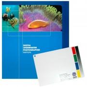 Ensemble Photographie numérique sous-marine (Digital Underwater Photographer)